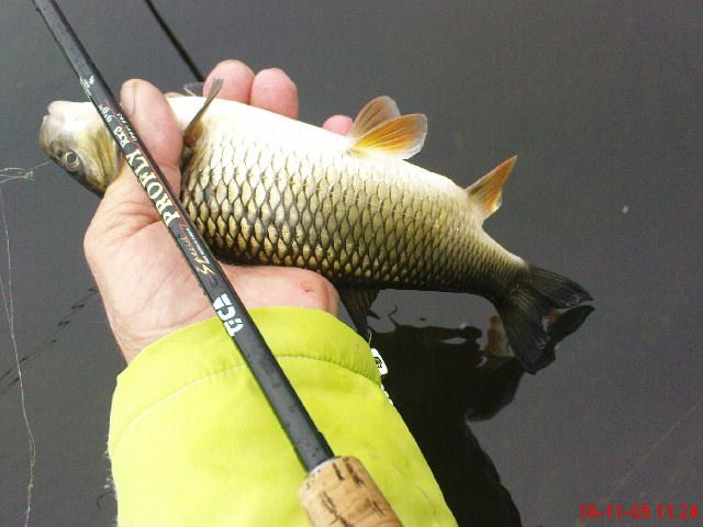 Риболова на муха продължава A0a000f6e857b939