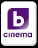 БТВ Cinema
