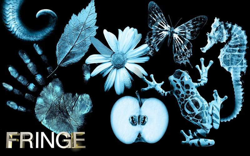 Fringe/Фриндж 3a610b717029e382