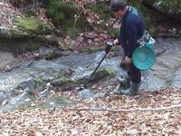 Самородно злато с металдетектор по централна Средна гора-експедиция. 256d5de3ad438620