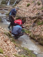 Самородно злато с металдетектор по централна Средна гора-експедиция. Ff03def90b478c48