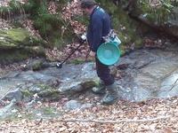 Самородно злато с металдетектор по централна Средна гора-експедиция. A7ec629782b7da97